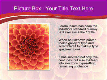 0000082712 PowerPoint Templates - Slide 13