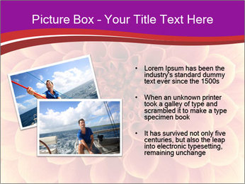 0000082712 PowerPoint Templates - Slide 20