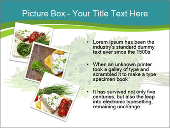 0000082714 PowerPoint Templates - Slide 17