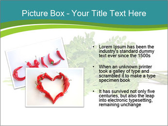 0000082714 PowerPoint Templates - Slide 20