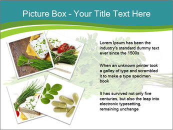 0000082714 PowerPoint Templates - Slide 23