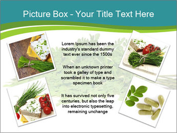 0000082714 PowerPoint Templates - Slide 24