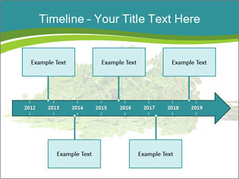 0000082714 PowerPoint Templates - Slide 28
