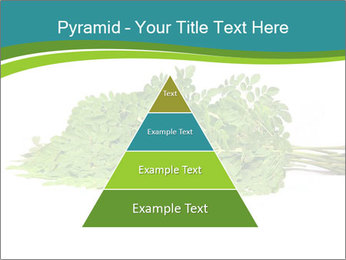 0000082714 PowerPoint Templates - Slide 30