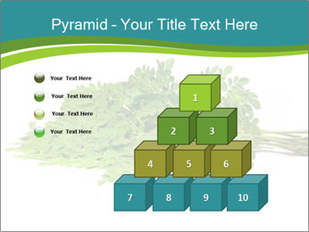 0000082714 PowerPoint Templates - Slide 31