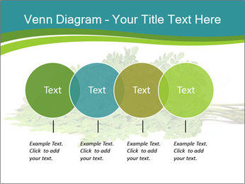 0000082714 PowerPoint Templates - Slide 32