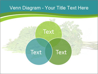 0000082714 PowerPoint Templates - Slide 33