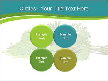 0000082714 PowerPoint Templates - Slide 38