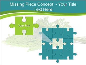 0000082714 PowerPoint Templates - Slide 45