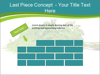 0000082714 PowerPoint Templates - Slide 46