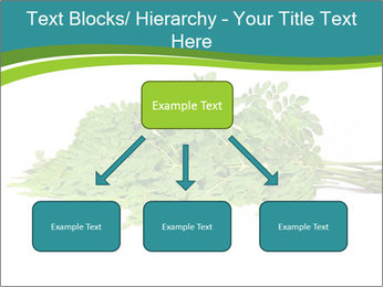 0000082714 PowerPoint Templates - Slide 69