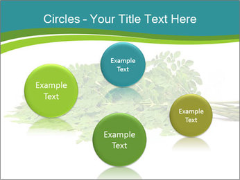 0000082714 PowerPoint Templates - Slide 77