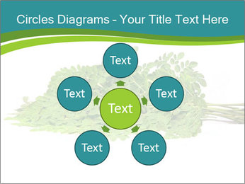 0000082714 PowerPoint Templates - Slide 78