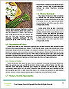 0000082714 Word Templates - Page 4