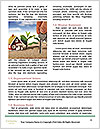 0000082716 Word Template - Page 4