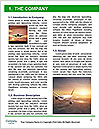 0000082717 Word Template - Page 3