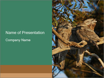 0000082721 PowerPoint Template - Slide 1