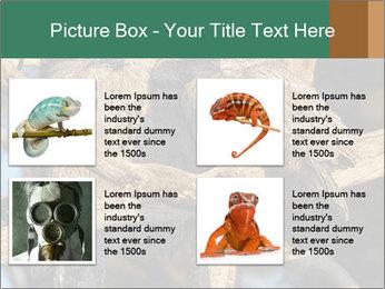0000082721 PowerPoint Templates - Slide 14