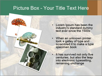 0000082721 PowerPoint Template - Slide 17