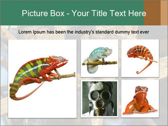 0000082721 PowerPoint Template - Slide 19