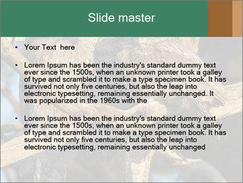 0000082721 PowerPoint Templates - Slide 2