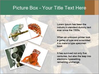 0000082721 PowerPoint Templates - Slide 23