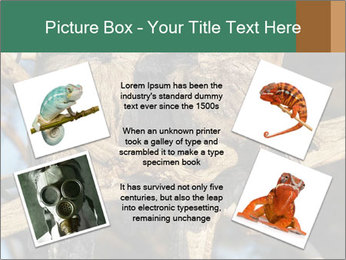 0000082721 PowerPoint Templates - Slide 24