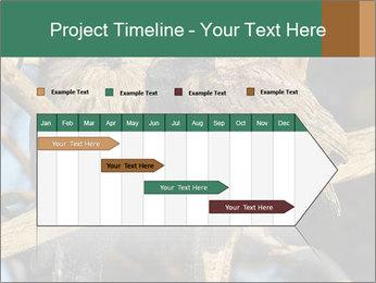 0000082721 PowerPoint Templates - Slide 25