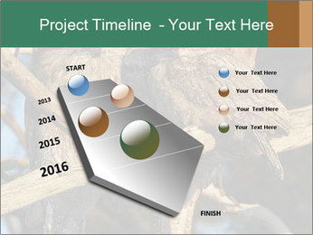 0000082721 PowerPoint Template - Slide 26
