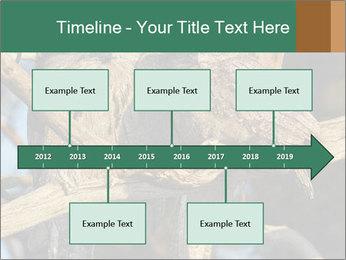0000082721 PowerPoint Templates - Slide 28