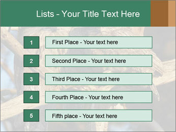 0000082721 PowerPoint Templates - Slide 3
