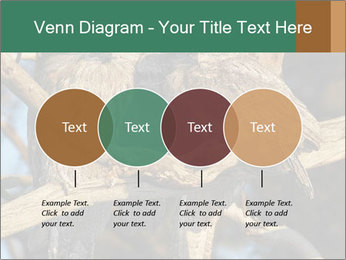 0000082721 PowerPoint Templates - Slide 32