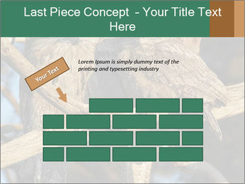 0000082721 PowerPoint Template - Slide 46