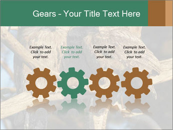 0000082721 PowerPoint Templates - Slide 48
