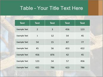 0000082721 PowerPoint Templates - Slide 55