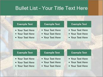 0000082721 PowerPoint Templates - Slide 56