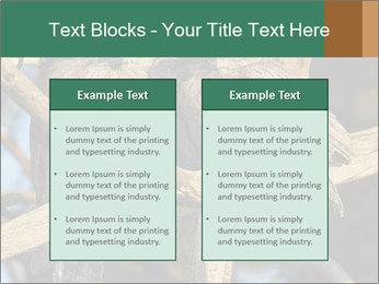0000082721 PowerPoint Templates - Slide 57