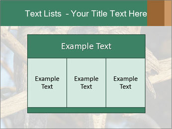 0000082721 PowerPoint Templates - Slide 59