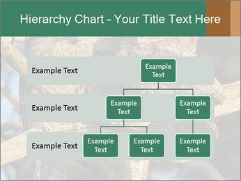 0000082721 PowerPoint Templates - Slide 67
