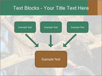0000082721 PowerPoint Templates - Slide 70