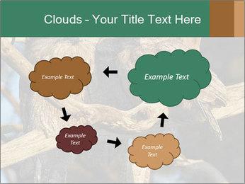 0000082721 PowerPoint Templates - Slide 72