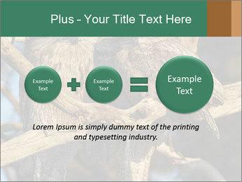 0000082721 PowerPoint Templates - Slide 75