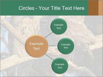 0000082721 PowerPoint Templates - Slide 79