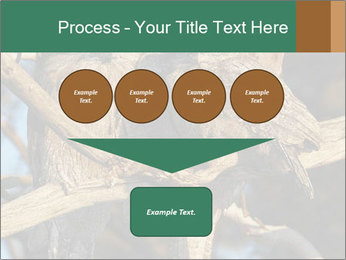 0000082721 PowerPoint Template - Slide 93