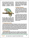 0000082721 Word Template - Page 4