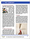 0000082723 Word Template - Page 3