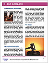 0000082728 Word Template - Page 3