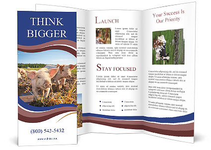0000082732 Brochure Templates