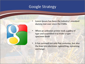 0000082732 PowerPoint Templates - Slide 10