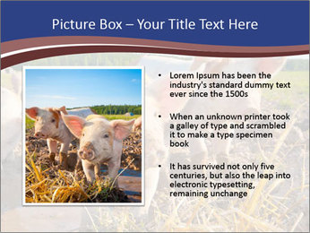 0000082732 PowerPoint Template - Slide 13